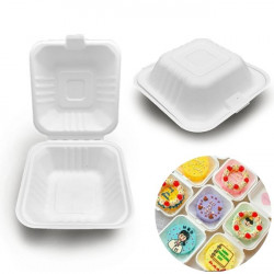 Bento Box - 5X5 inches (Pack Of 25)